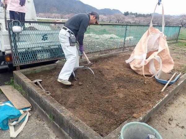 土を掘ります