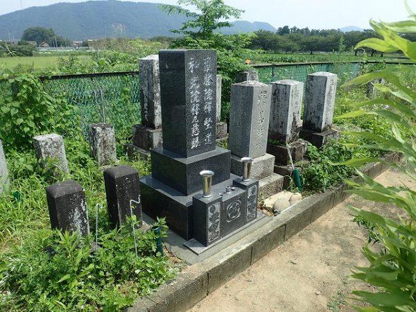 雑草だらけの墓所