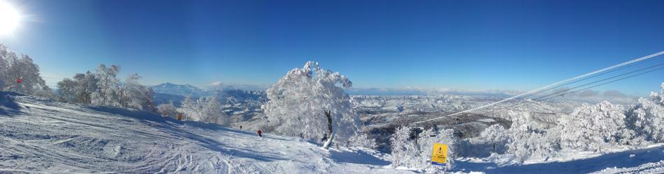 スキー馬鹿
